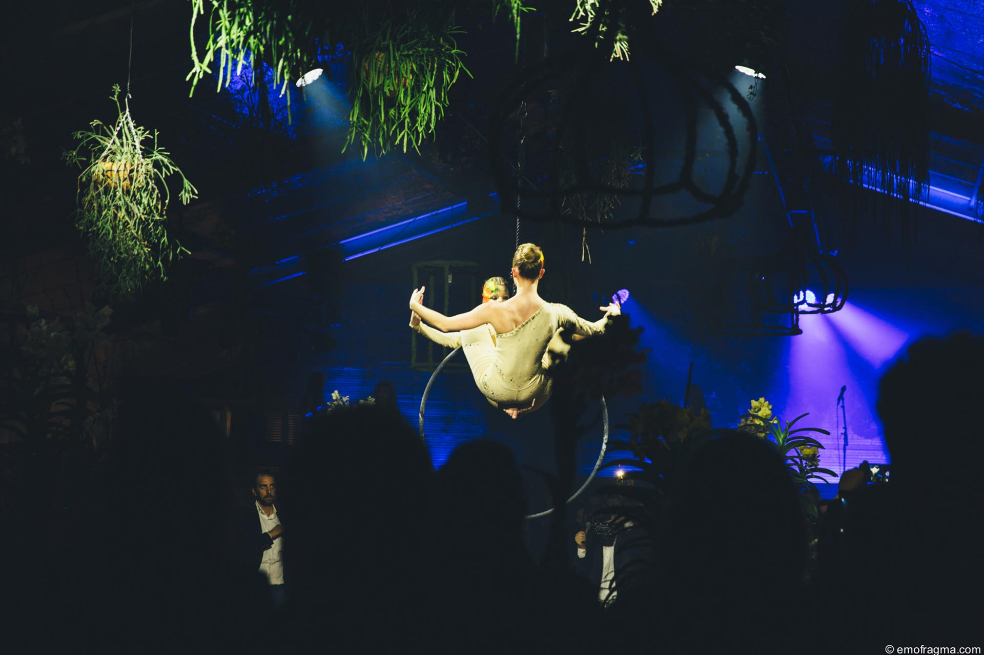 Compagnie_newa_ring_lyra_hoop_circus_aerials_luchtacrobatiek