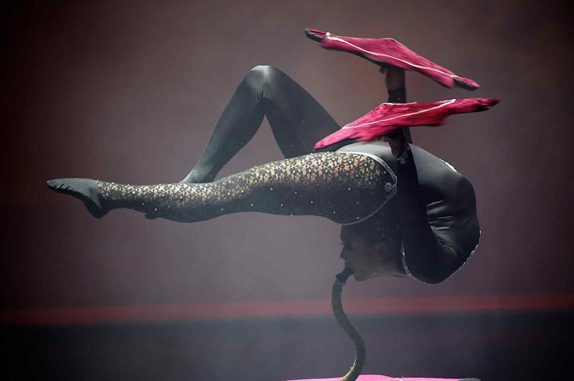 Compagnie_NEWA_contortionist_slangenmens